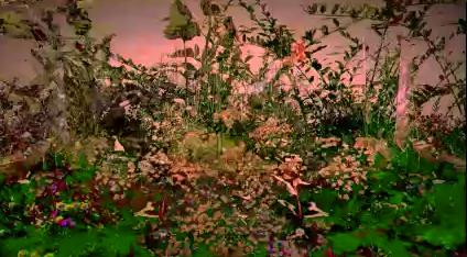 Videostill Irene Naef – Schauen I